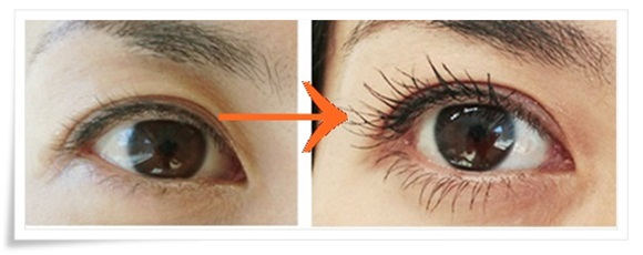 cellula-eyelash1