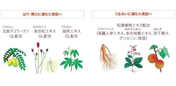 ayura bicassa force serum & plate premium (14)