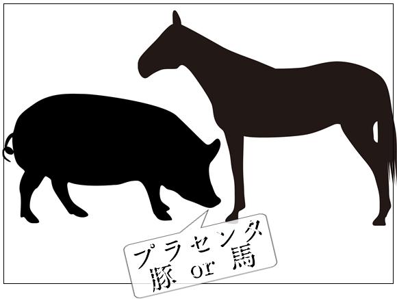 DHC 豚プラセンタ
