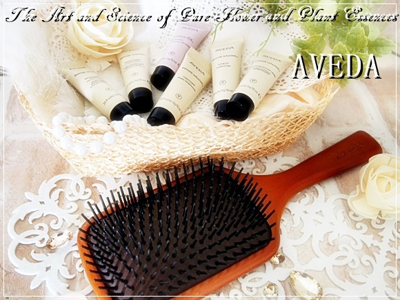AVEDA-Paddle brush (6)