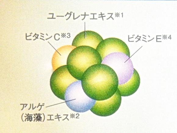 euglena-one-all-in-one-cream (10)