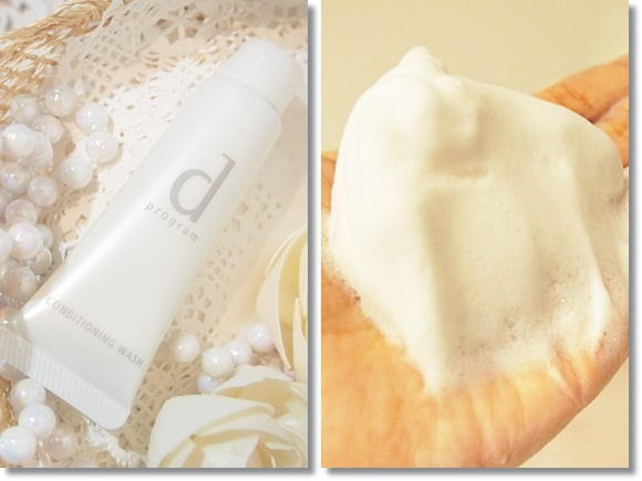 shiseido dprogram trialset (19)
